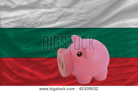 Piggy Rich Bank And  National Flag Of Bulgaria