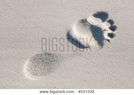 Human Foot Print On A Beach