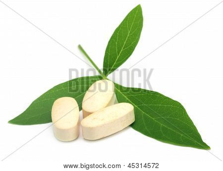 Tablets with Vitex Negundo or Medicinal Nishinda leaves