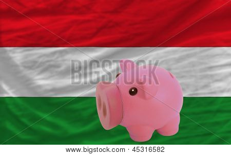 Piggy Rich Bank And  National Flag Of Hungary