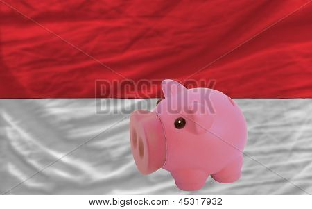 Piggy Rich Bank And  National Flag Of Indonesia