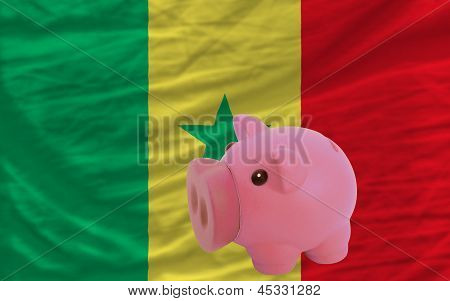 Piggy Rich Bank And  National Flag Of Senegal