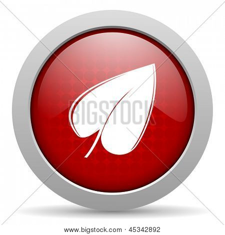 leaf red circle web glossy icon