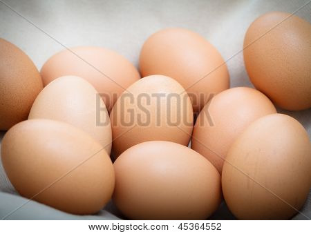 Fresh Eggs On The Cloth