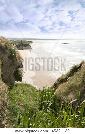 Flora View From The Top Of The Cliffs In Ballybunion