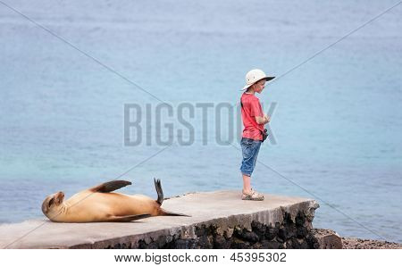 Female sea lion wand boy at rocky coast