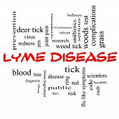 picture of bullseye  - Lyme Disease Word Cloud Concept in red caps with great terms such as deer tick blood bullseye bite and more - JPG
