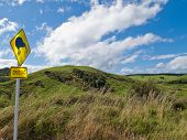 Attention Kiwi Crossing Roadsign and NZ landscape