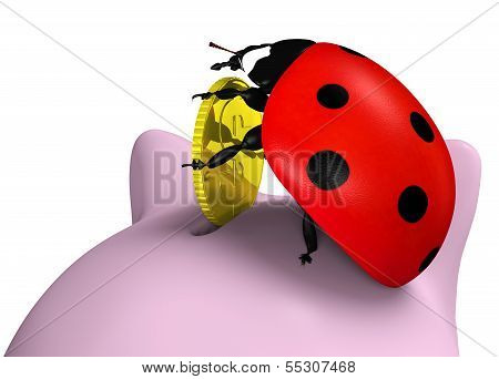 Ladybug Inserts A Coin