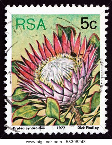 Postage Stamp South Africa 1977 King Protea, Flowering Plant