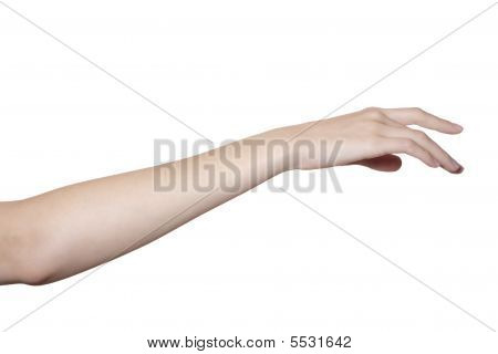Hand And Arm Isolated On White