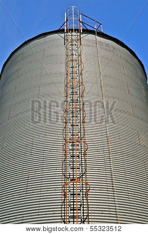 Ladder and cage of a tall steel  grain bin