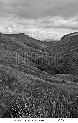 Long Grass And Winding Road With Mountains In Black And White