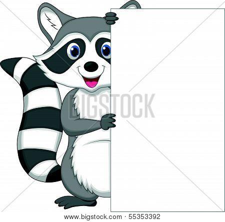 Cute raccoon cartoon holding blank sign