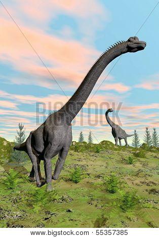 Brachiosaurus dinosaurs - 3D render