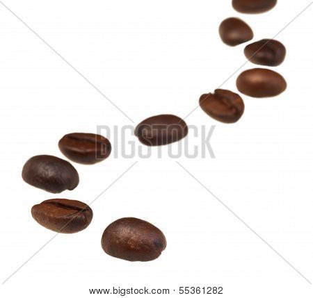 Sinuous Line Pattern From Roasted Coffee Beans