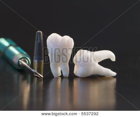 Dental Assesory