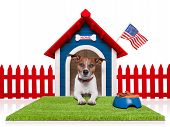 foto of dog-house  - dog in house with american flag and bowl full of food - JPG