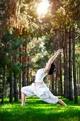 image of virabhadrasana  - Yoga virasana warrior pose by woman in white costume on green grass in the park around pine trees - JPG