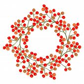picture of mountain-ash  - red orange rowan berry mountain ash berries beautiful delicate autumn season decoration wreath on white background - JPG