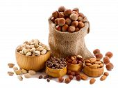 stock photo of hazelnut  - Hazelnuts - JPG