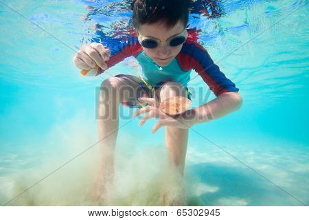 Cute little boy swimming underwater in tropical sea with sand dollar