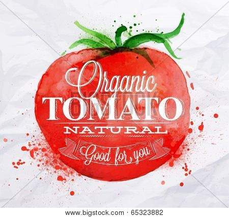 Tomato watercolor poster