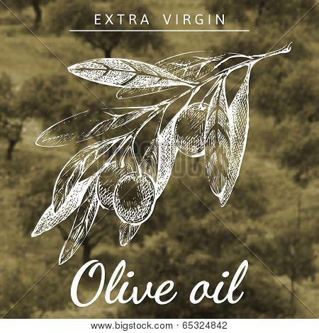 Hand drawn olive branch over landscape background
