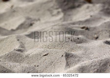 Fine Sand Beach Area Is Rugged.