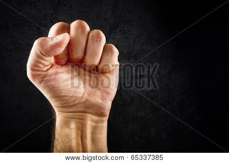 Riot Protest Fist