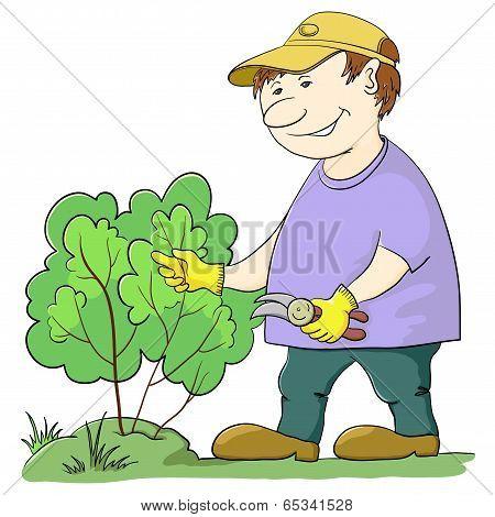 Gardener cuts a bush