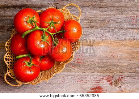 Basket Of Freshly Ripened And Cleaned Tomatoes