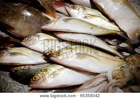 Fresh Fish On Ice For Sale At Market