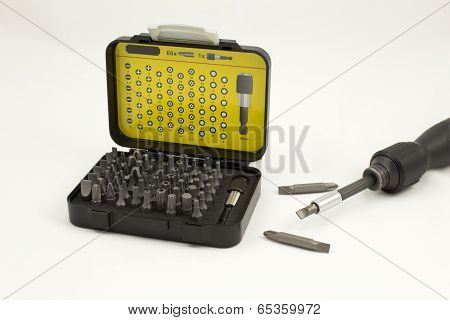 Assorted interchangeable bits and screwdriver