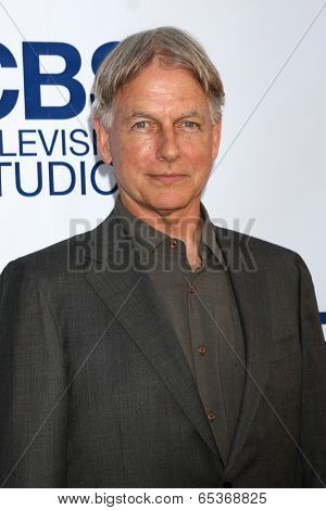 LOS ANGELES - MAY 19:  Mark Harmon at the CBS Summer Soiree at London Hotel on May 19, 2014 in West Hollywood, CA