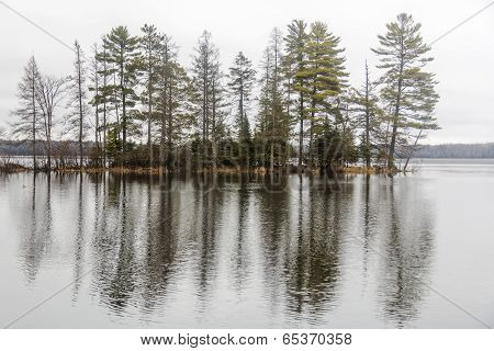 tree line reflections, Round Lake