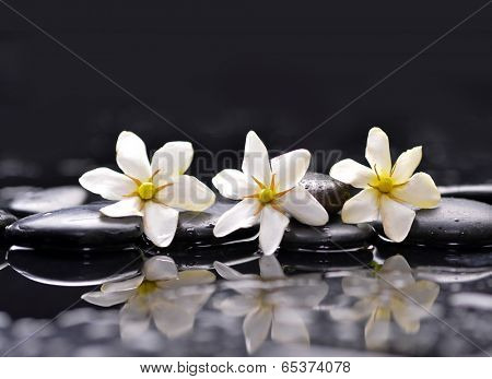 Three gardenia flower on pebbles �¢�?�?reflection background