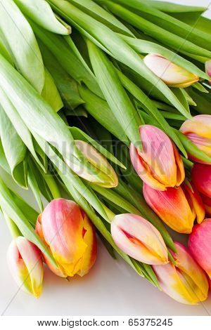 Colorful Tulips In A Bouquet To Each Other.