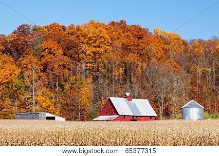 Farm And Autumn Hillside