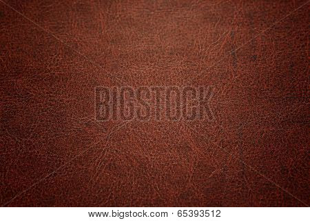 Dark Color Of Detailed Leather.