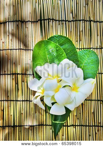 white frangipani flowers bouquet decorated in green leaves laying on bamboo wood mat with copy space