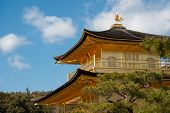 ������, ������: Kinkakuji Golden Pavilion Temple In Kyoto