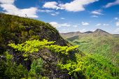 stock photo of jock  - A grand vista overlooking the Linville Gorge with Hawksbill Mountain in the background on a sunny spring day in North Carolina - JPG