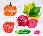 image of cucumbers  - Vegetables set drawn watercolor blots and stains with a spray pumpkin - JPG