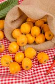 picture of loquat  - Sack with freshly picked loquats a springtime fruit - JPG