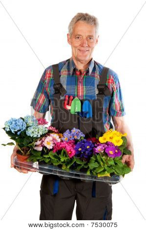 Gardener With Flowers