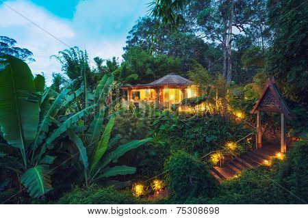 Tropical Cabin Retreat in the Jungle at Sunset