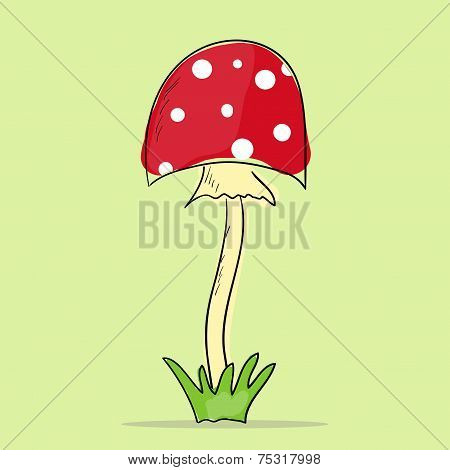 Illustration Of Mushroom Amanita