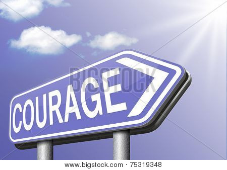 fearless and courage and bravery the ability to confront fear pain danger uncertainty and intimidation courageous