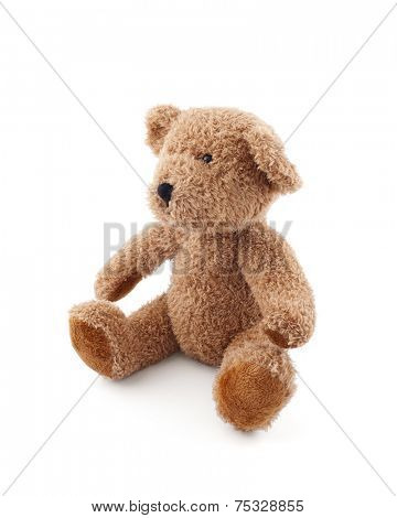 Brown teddy bear on white background